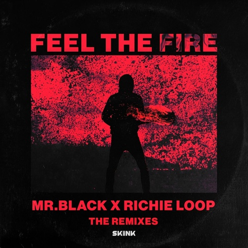 Cover - Richie Loop, Mr.Black - Feel The Fire (D.N.A Extended Remix)