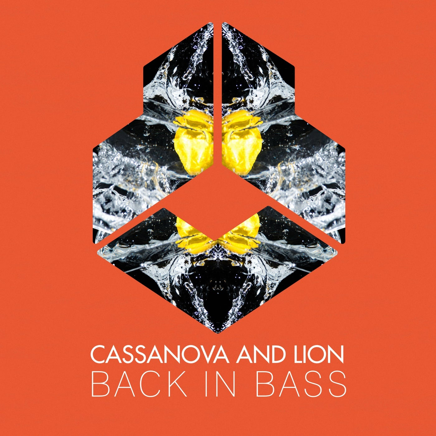 Cover - Cassanova, Lion - Back In Bass (Extended Mix)